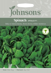 Spinach Seeds 'Apollo' F1 by Johnsons
