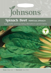 Spinach Beet Seeds 'Perpetual Spinach' by Johnsons