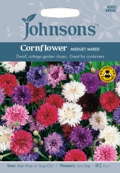 Cornflower Seeds 'Midget Mixed' by Johnsons