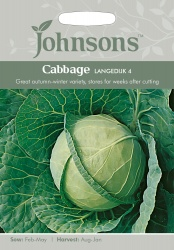 Cabbage Seeds 'Langedijk 4' by Johnsons