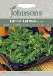 Lambs Lettuce Seeds 'Favor' by Johnsons