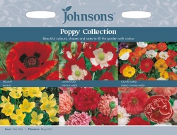 Poppy Seed Collection by Johnsons