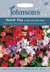 Sweet Pea Seeds 'Dwarf Explorer Mixed' by Johnsons