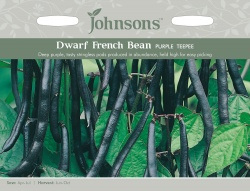 Dwarf French Bean Seeds Purple Teepee by Johnsons