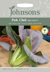 Pak Choi Seeds 'Red Choi' F1 by Johnsons