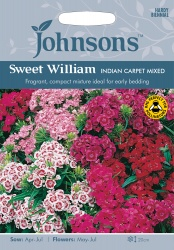 Sweet William Seeds 'Indian Carpet Mixed' by Johnsons