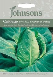 Cabbage Seeds 'Offenham 2' by Johnsons