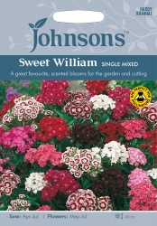 Sweet William Seeds 'Single Mixed' by Johnsons