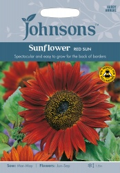 Sunflower 'Red Sun' Seeds by Johnsons