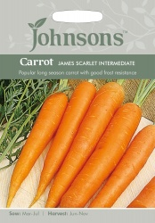 Carrot Seeds 'James Scarlet Intermediate' by Johnsons