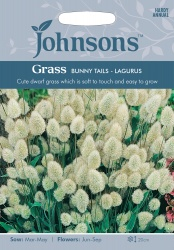 Grass Bunny Tails 'Lagurus' Seeds by Johnsons