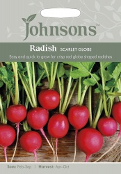 Radish Seeds 'Scarlet Globe' by Johnsons