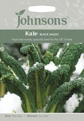 Kale Seeds 'Black Magic' by Johnsons