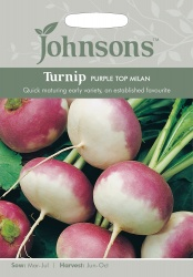Turnip 'Purple Top Milan' - Johnson's Seeds