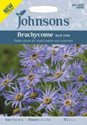 Brachycome Blue Star-Johnsons Seeds