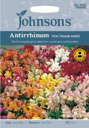 Antirrhinum Tom Thumb Mixed Seeds by Johnsons