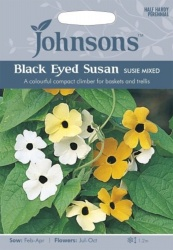 Black Eyed Susan Susie Mixed Seeds by Johnsons