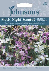 Stock Night Scented 'Starlight Sensation' Seeds By Johnsons