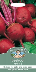 Beetroot Seeds Perfect 3 by Mr Fothergills