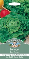 Lettuce Seeds Tom Thumb by Mr Fothergills