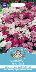 Candytuft Seeds 'Fairy Mixed' by Mr Fothergill's