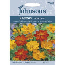 Cosmos Variety 'Ladybird' Mixed by Johnsons Seeds